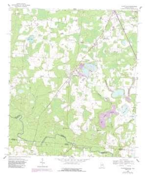 Clyattville topo map