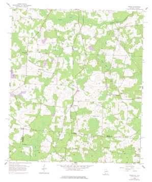 Baden topo map