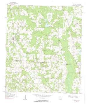 Metcalf topo map