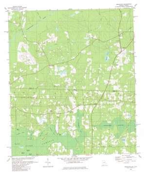 Beachton topo map