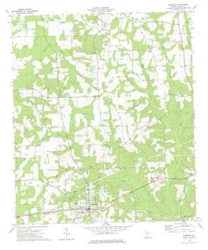Whigham topo map