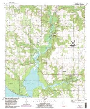 Magnolia Springs topo map