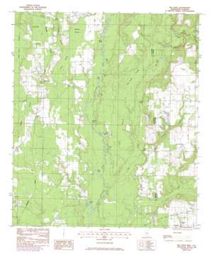 Big Point topo map