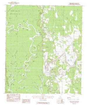 Three Rivers topo map