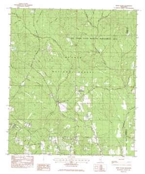 White Plains topo map