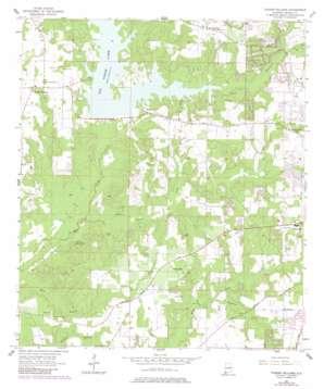 Tanner Williams topo map