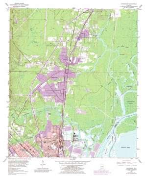 Chickasaw topo map