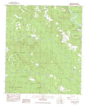 Benndale topo map