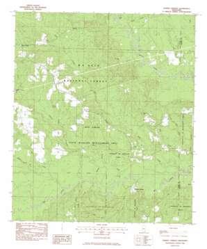 Ramsey Springs topo map