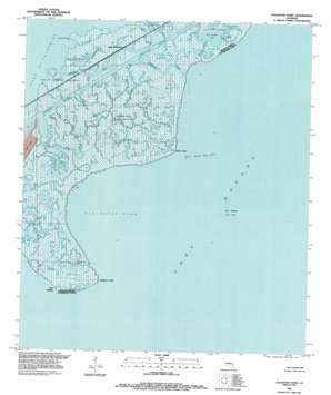 Alligator Point topo map