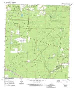 Saint Tammany topo map