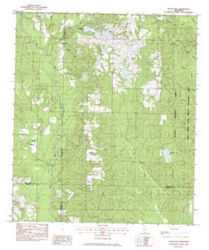 Silver Run topo map