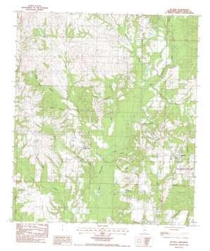 Mcneill topo map