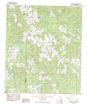 Browns Lake topo map