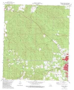 Bogalusa West topo map