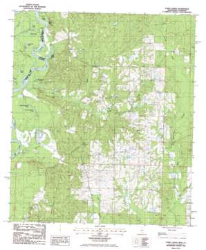 Fords Creek topo map