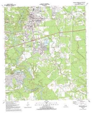 Denham Springs topo map