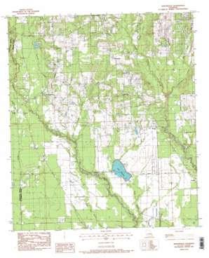 Martinville topo map