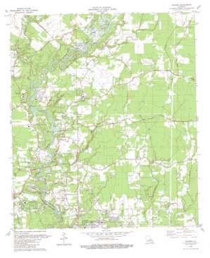 Watson topo map