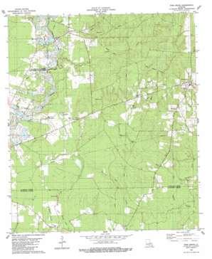 Pine Grove topo map