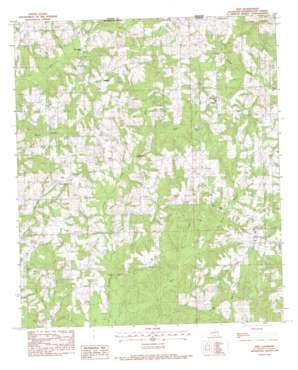 Pine topo map