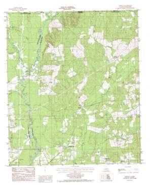 Chipola topo map