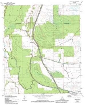 Bayou Jack topo map