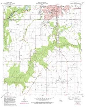Eunice South topo map