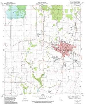 Ville Platte topo map