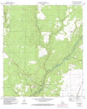 Pine Chapel topo map