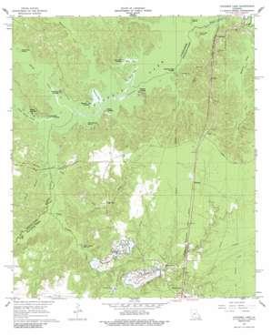 Cocodrie Lake topo map