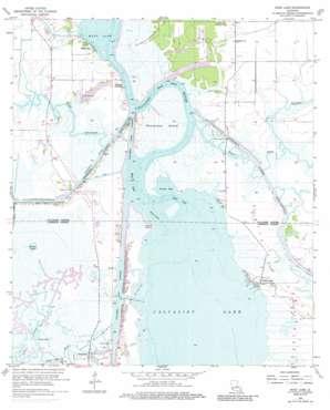 Moss Lake topo map