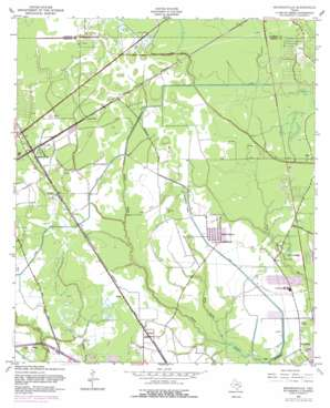 Mauriceville topo map