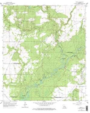 Topsy topo map