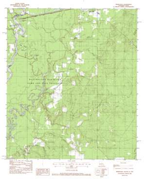 Merryville South topo map