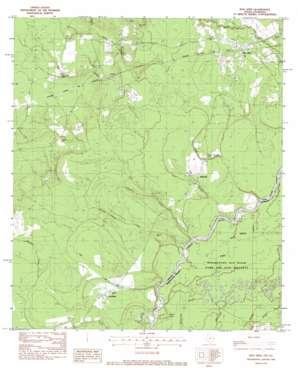Bon Wier topo map
