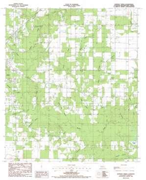 Boneset Creek topo map