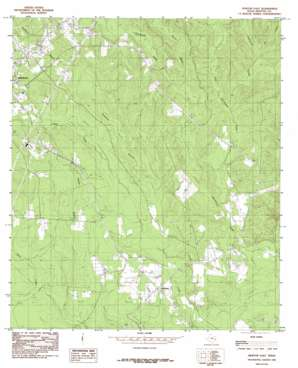 Newton East topo map