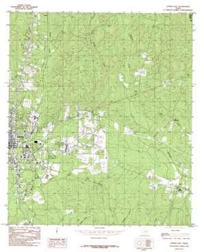 Jasper East topo map