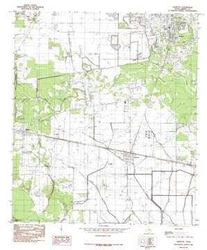 Daisetta topo map