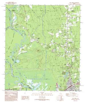 Pine Forest topo map