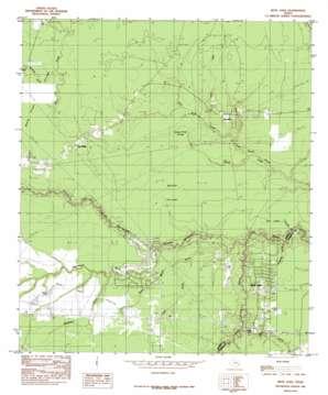 Bevil Oaks topo map