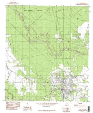 Sour Lake topo map