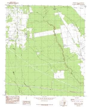 Thorson Gully topo map