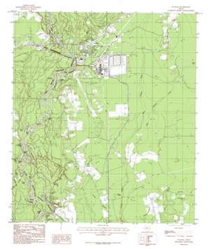 Evadale topo map