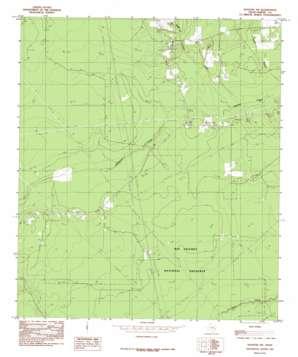 Kountze Sw topo map
