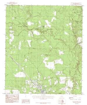 Kountze North topo map