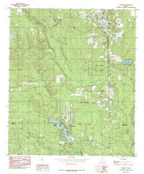 Warren topo map