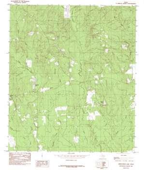 Kirkpatrick Lake topo map