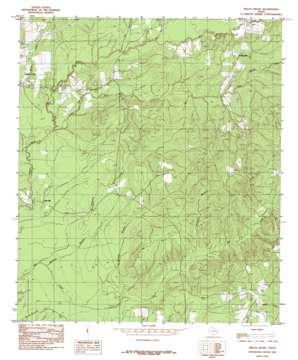 Beech Grove topo map